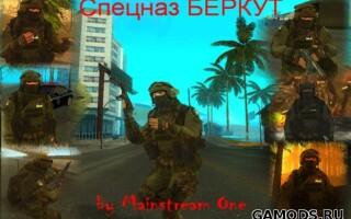 "Спецназ ""Беркут"" для SWAT"